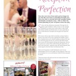 The Perfect Wedding 8 Contents page 15