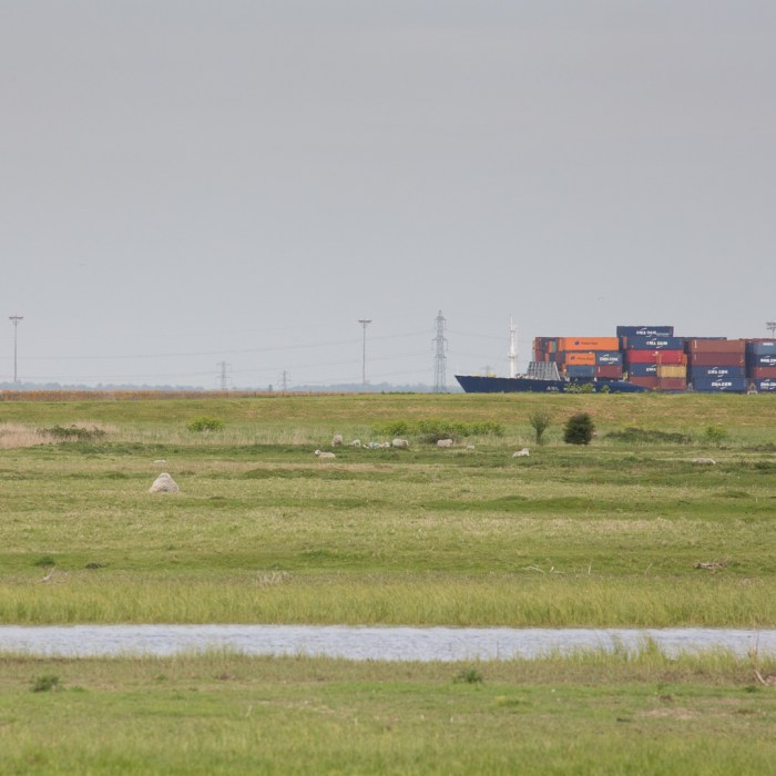 Container ship on the Thames from the Hoo Peninsula.