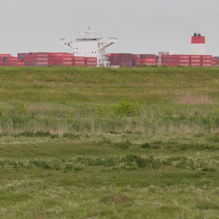Container ship on the Thames from the Hoo Peninsula II.