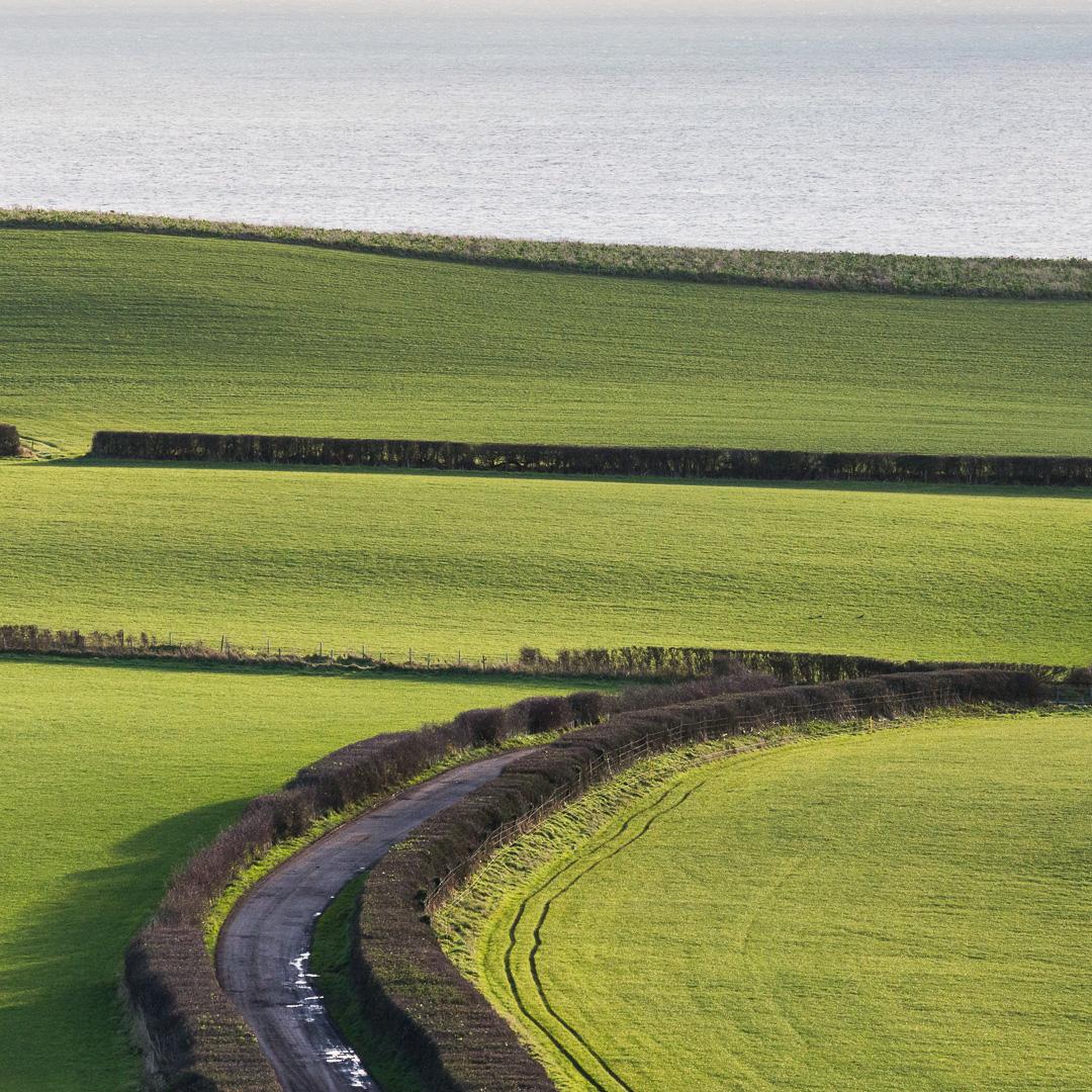New Barn Road from Linton Hill, Dorset.