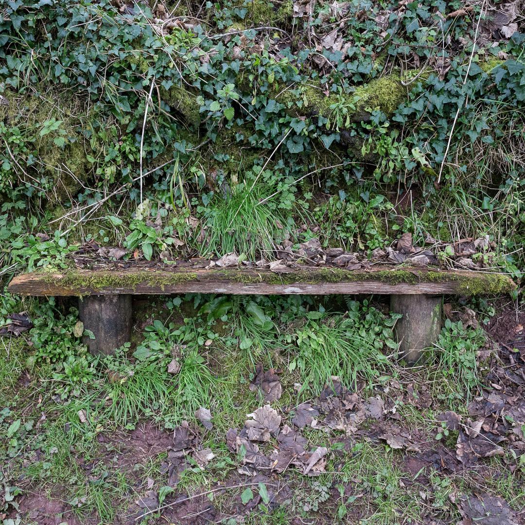 Bench, Babbacombe, Devon.