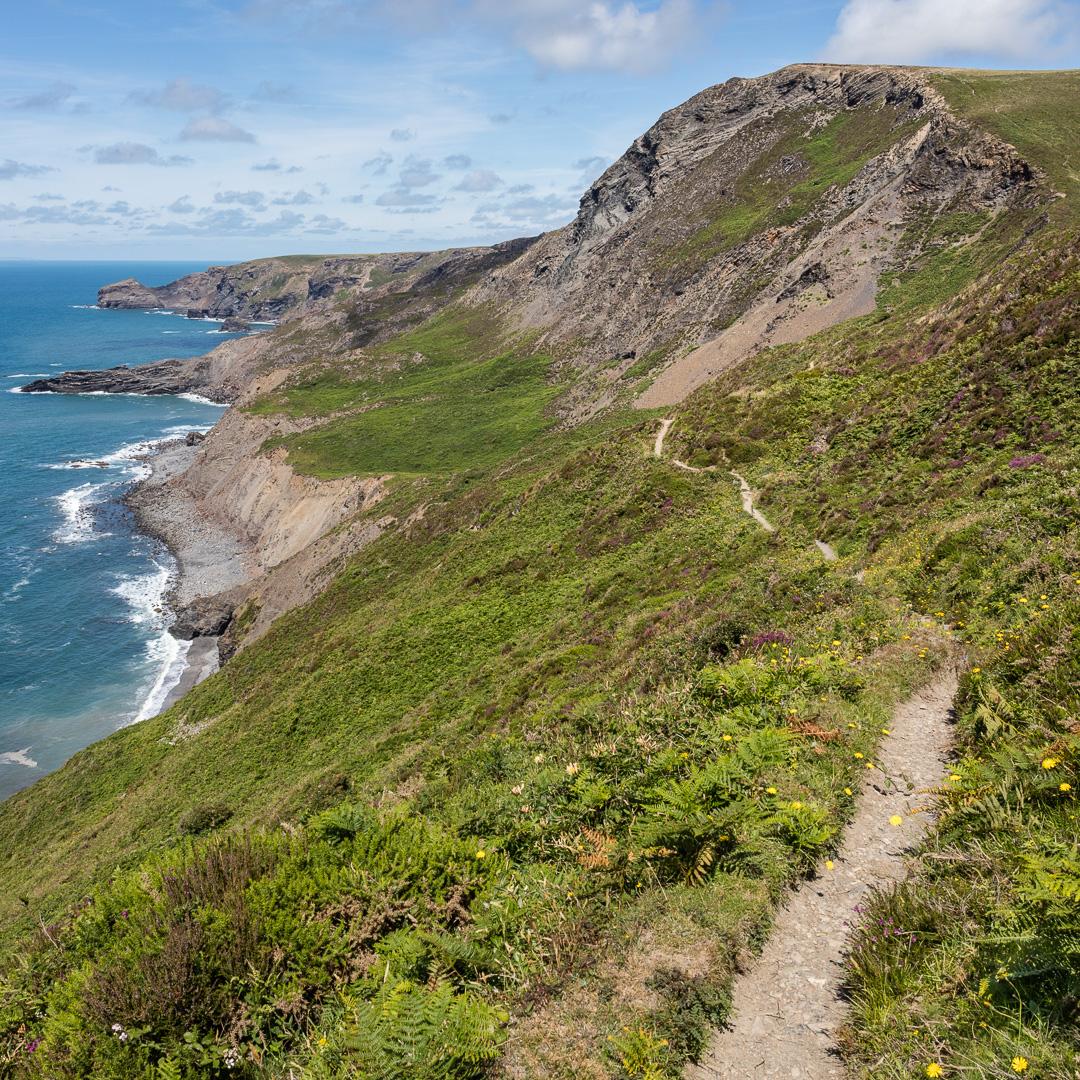 Coast path to High Cliff, Cornwall.