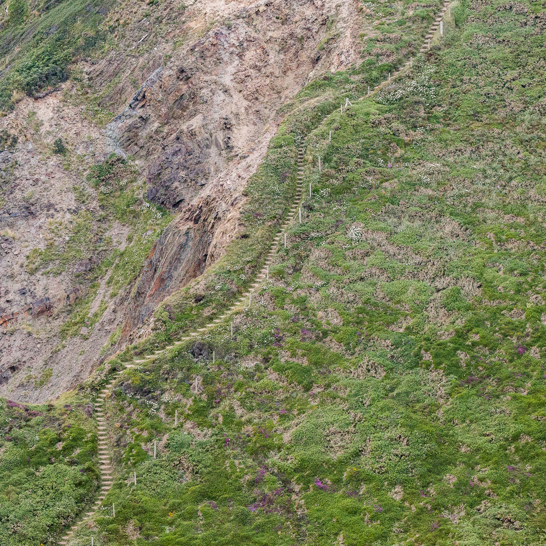 Coast path up Yeolmouth Cliff, Cornwall.