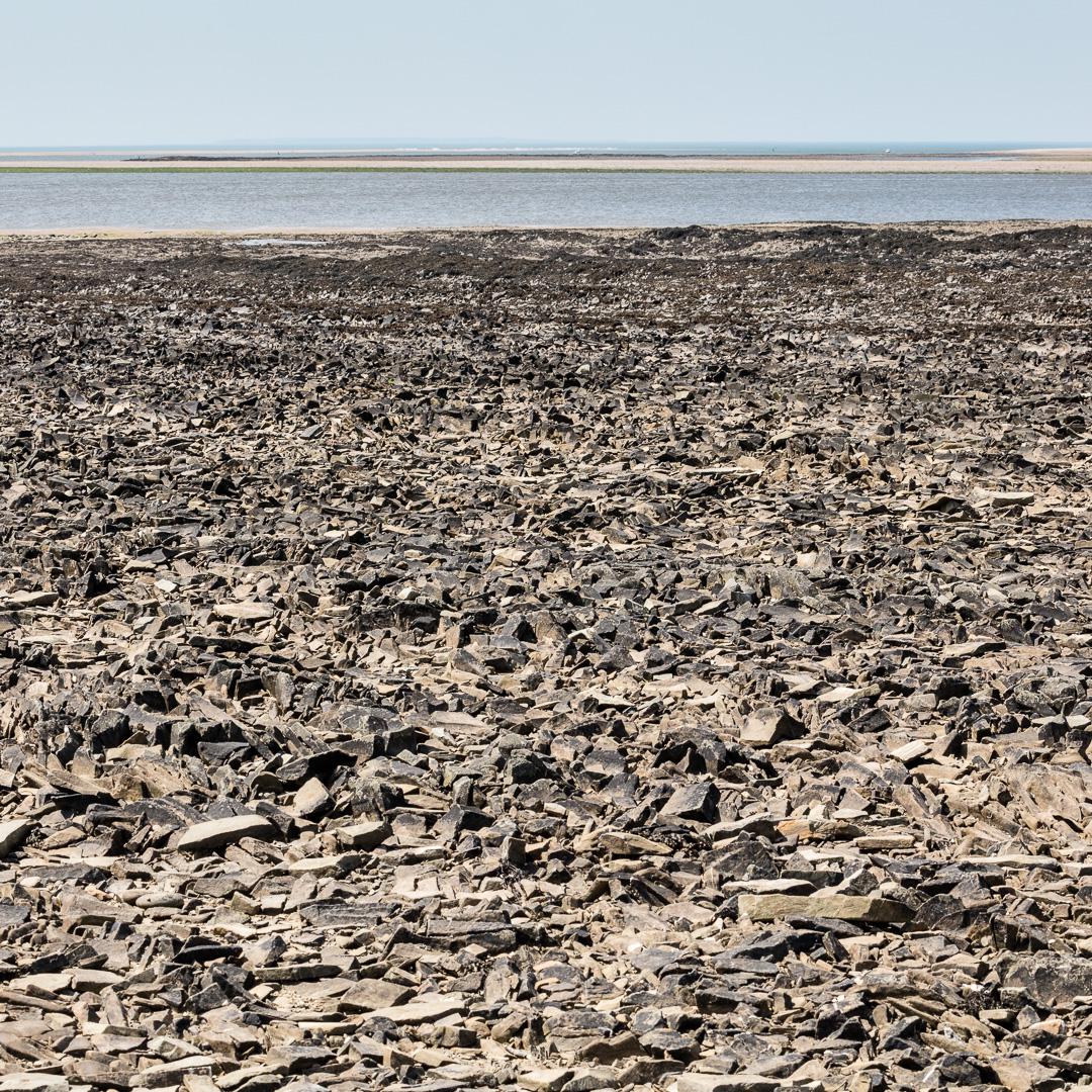 The Black Ground, Low tide on the Taw/Torridge estuary, Devon