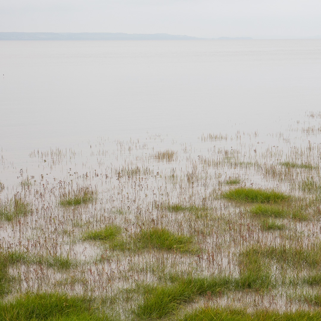 High Tide, Roggiett Moor, Gwent.