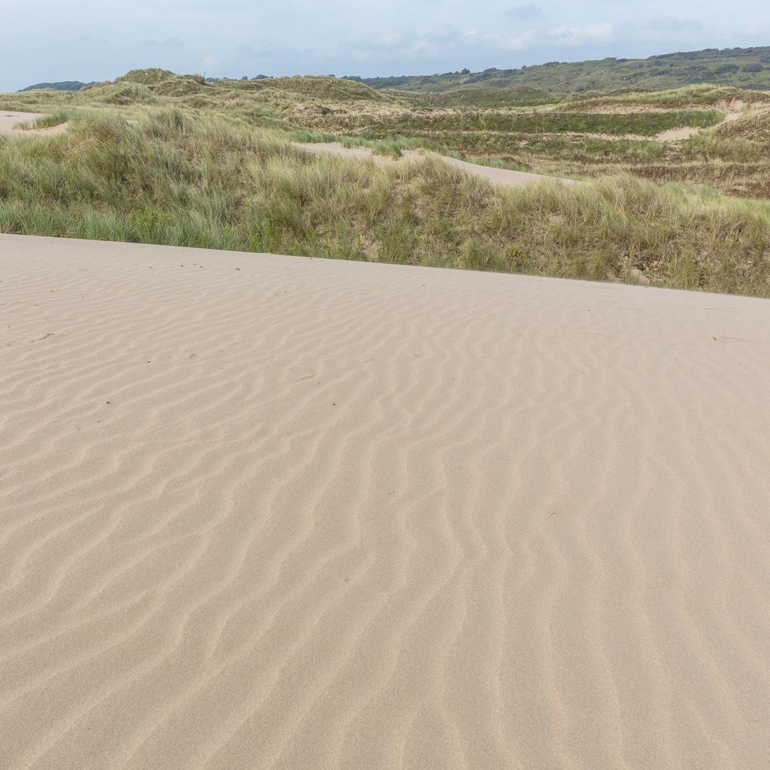 Merthyr Mawr Dunes I, Glamorgan.