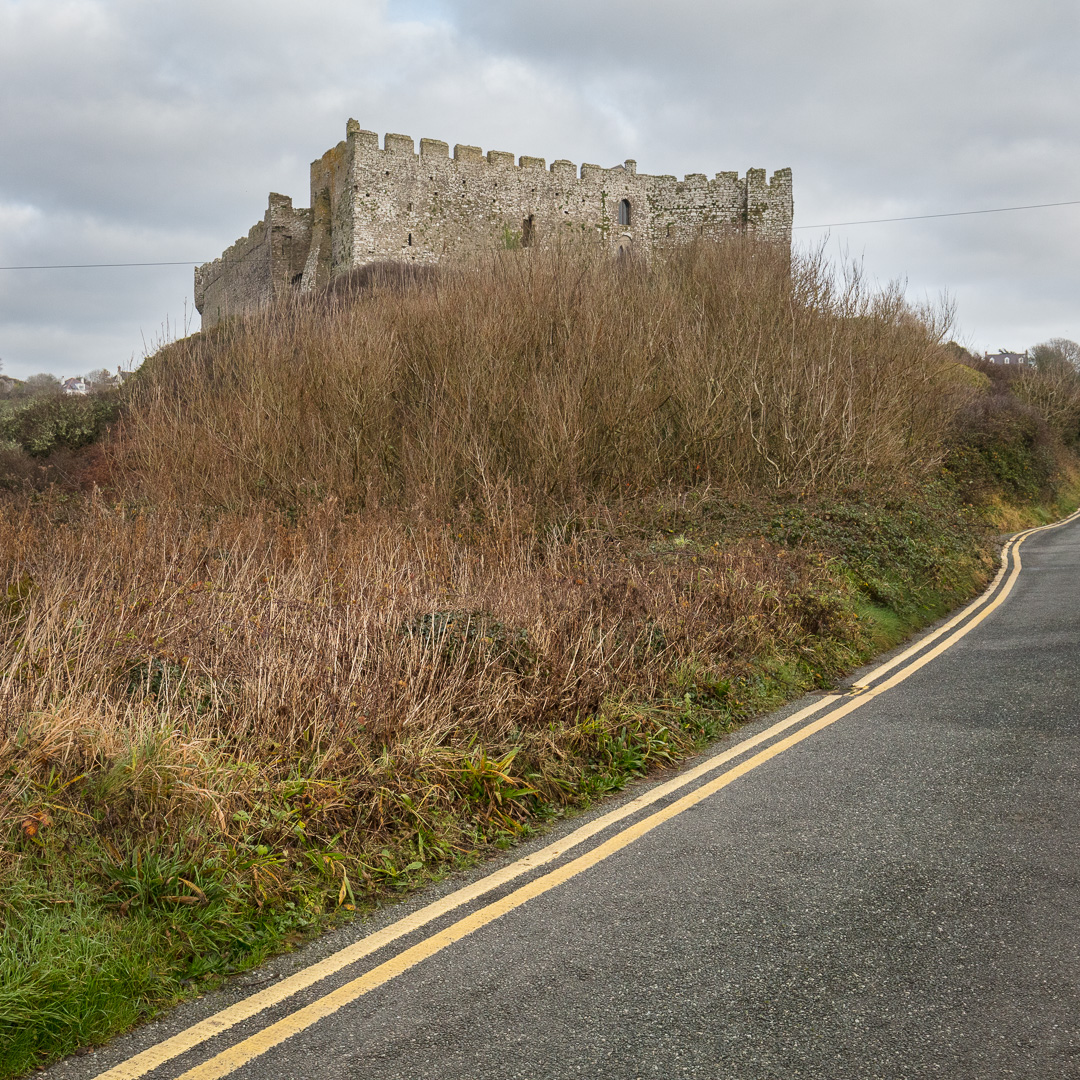 Double Yellow, Manorbier Castle, Dyfed.