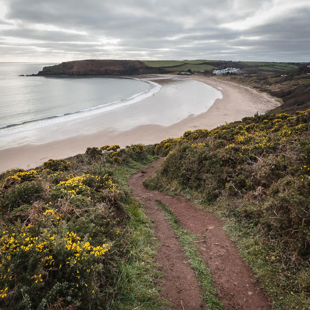 Coast path to Freshwater East, Dyfed.