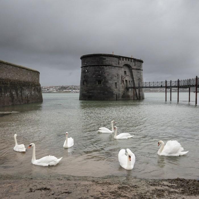 High Contrast. Martello tower, Pembroke Dock, Pembrokeshire.