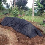 Hügelkultur Raised Bed