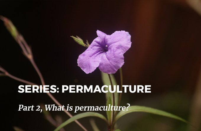 Series Permaculture Part 2