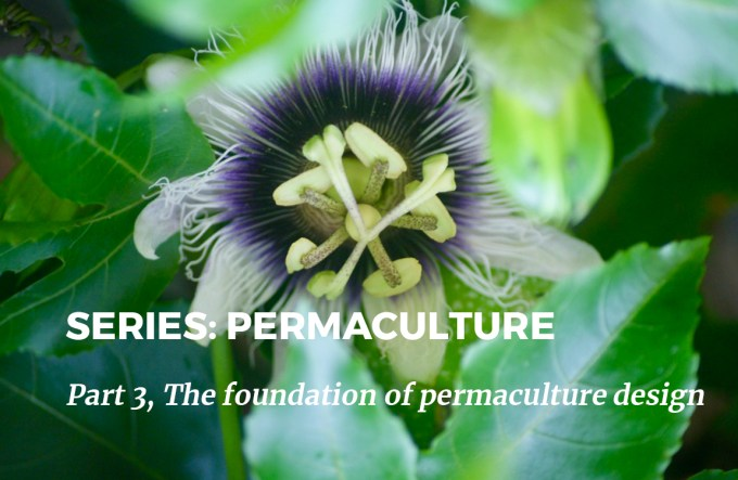 Series Permaculture Part 3