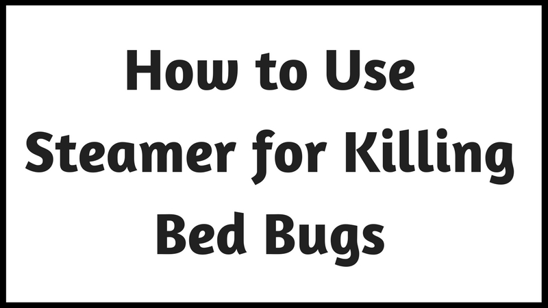 Best Steamer for Bed Bugs: 5 Most Effective Steam Cleaners