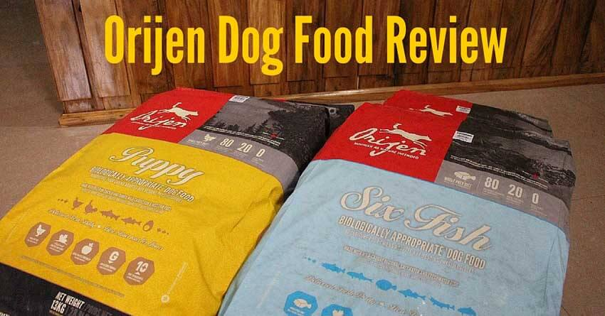 Orijen Dog Food Reviews >> Orijen Dog Food Reviews Recalls Ingredients 2018