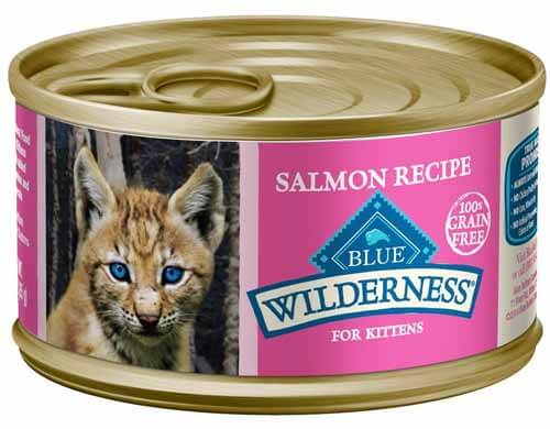 best kitten wet food