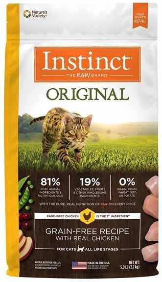 best dry food for kittens