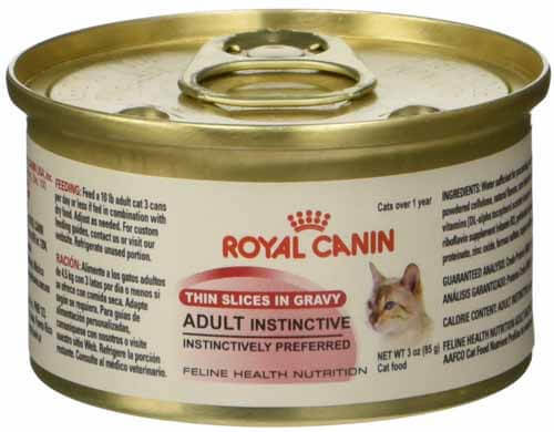 best canned food for kittens