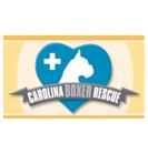 Carolina Boxer Rescue
