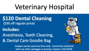 January Dental Special