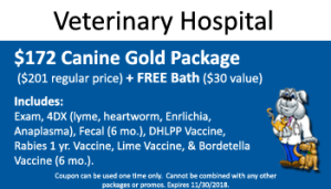 November Canine Gold Package Special