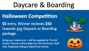 October Halloween Competition