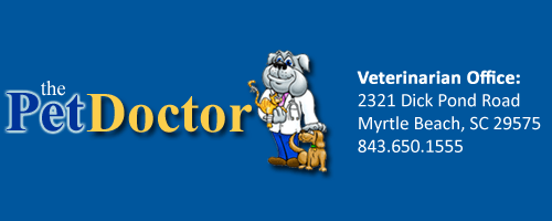 The Pet Doctor Veterinary Office