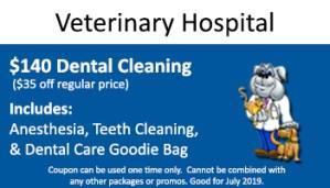 July Vet Hospital – $140 Dental Special
