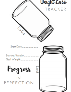 Free printable bullet journal weight loss tracker also pages the petite planner rh thepetiteplanner