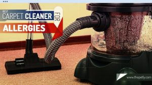 best portable carpet cleaner for pets