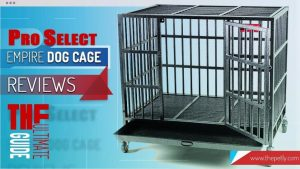 The cover image of the article on ProSelect Empire Dog Cage Reviews