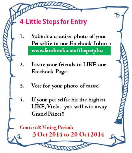 4steps to contest