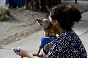 dog comforts woman