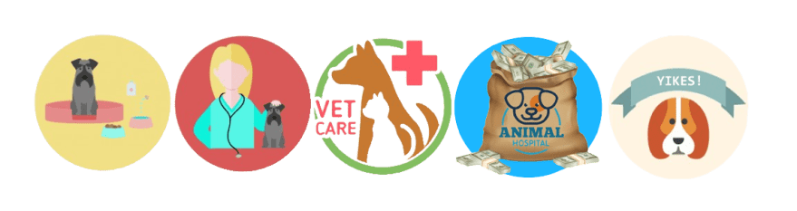expensive vet care