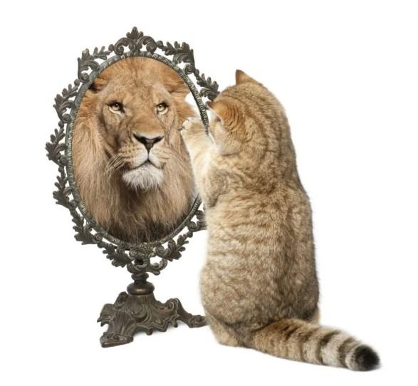 lion-mirror