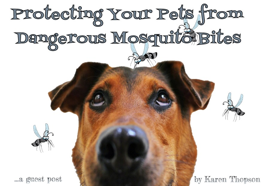 misquito protection for pets