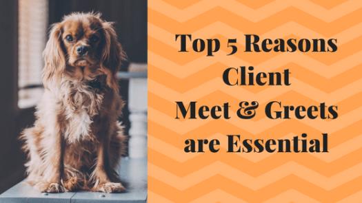 Top 5 Reasons For Client Meet & Greet