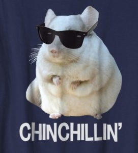 Gifts Ideas for Chinchilla Lovers & Owners