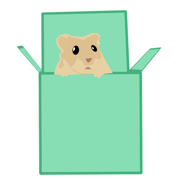 gifts for hamster owners and lovers