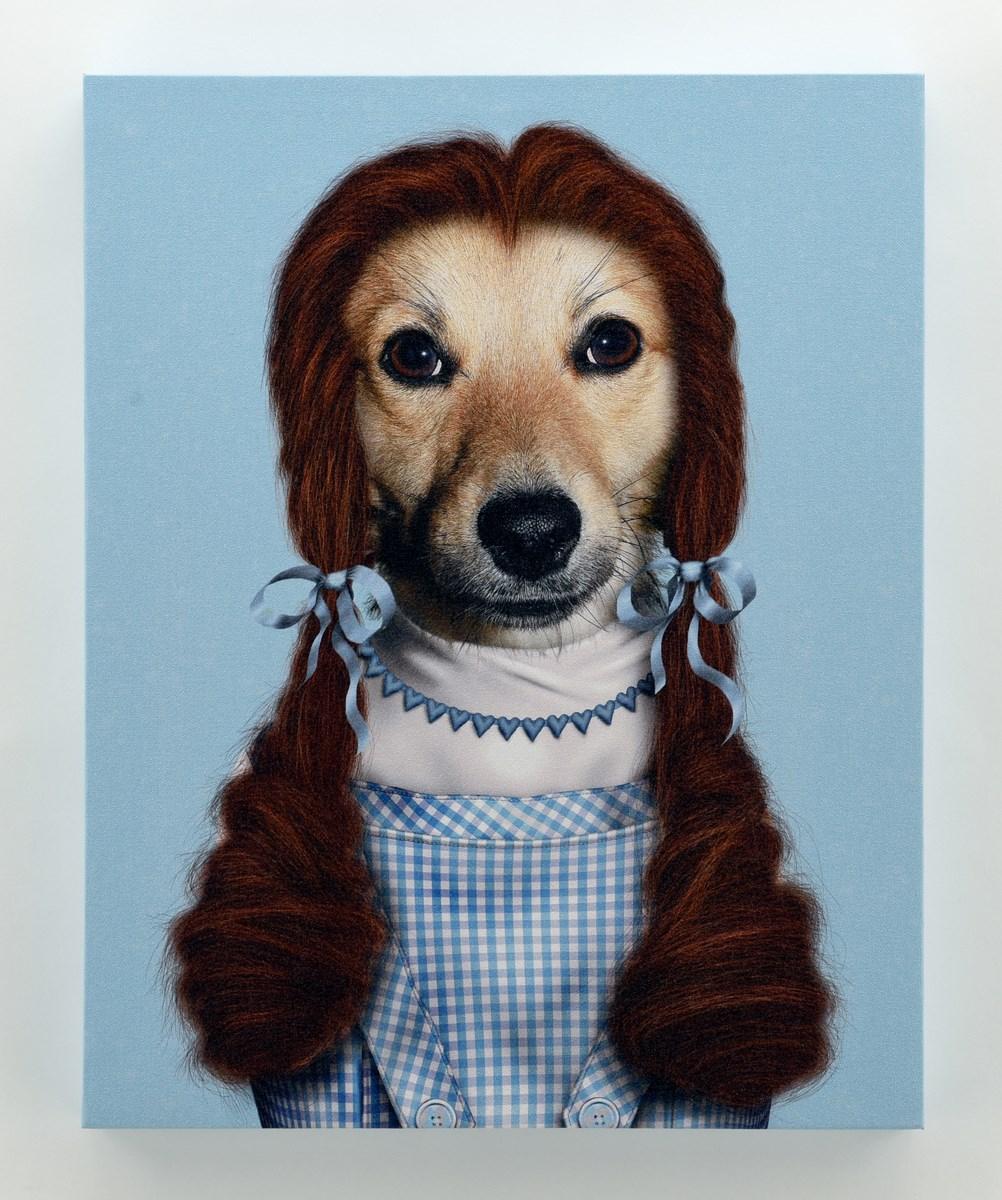 dorothy dog wizard of