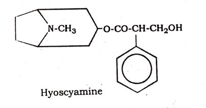 Belladonna Chemical constituents