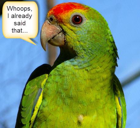 Parrot_Tweet