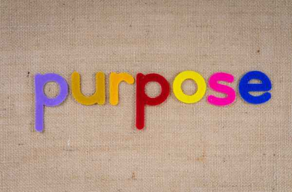 How Do You Find Your Essential Purpose?