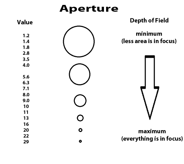 Aperture. The basic tutorial for a beginner photographer.