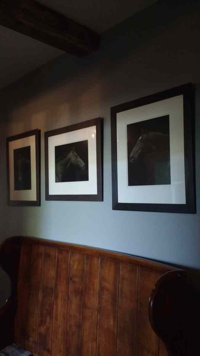 Three monochrome portrait photographs of horses hung above a bench in a hallway in Faversham.