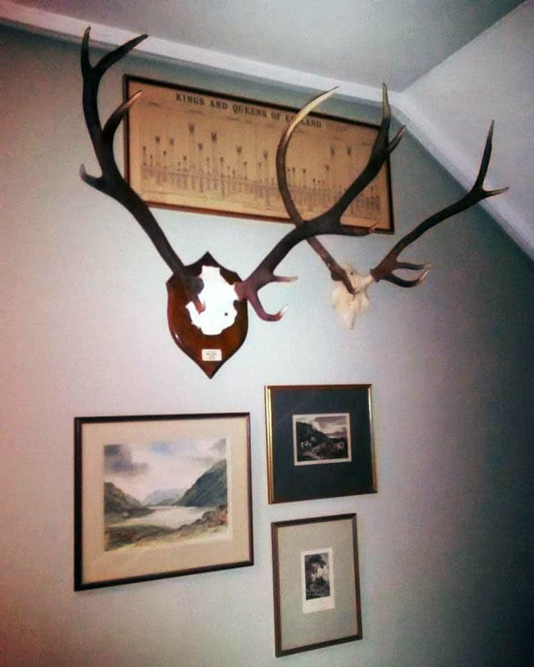 Antlers and pictures hung in a collage arrangement in a hallway in Hampshire.