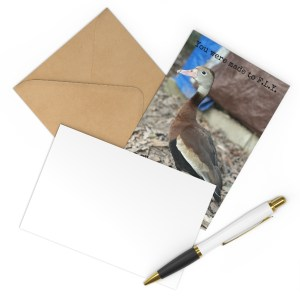 Cards and Postcards