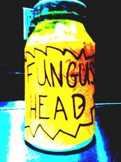 fungushead