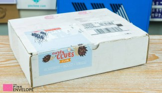 Curly Clues Club Review