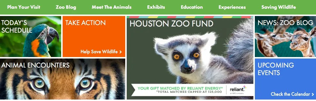 When to go to the Houston Zoo