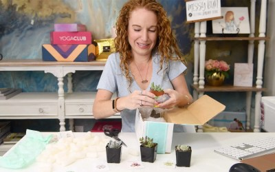 Succulent Subscription Box – Yes You Read That Right